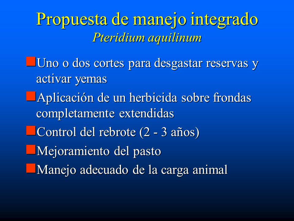 Propuesta de manejo integrado Pteridium aquilinum