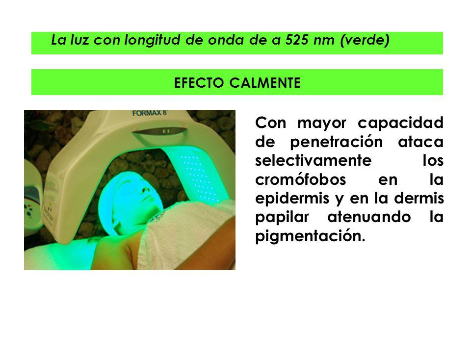 La luz con longitud de onda de a 525 nm (verde)