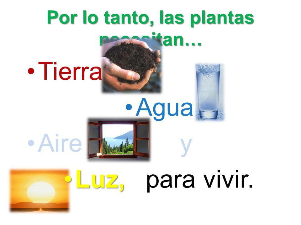 Por lo tanto, las plantas necesitan…