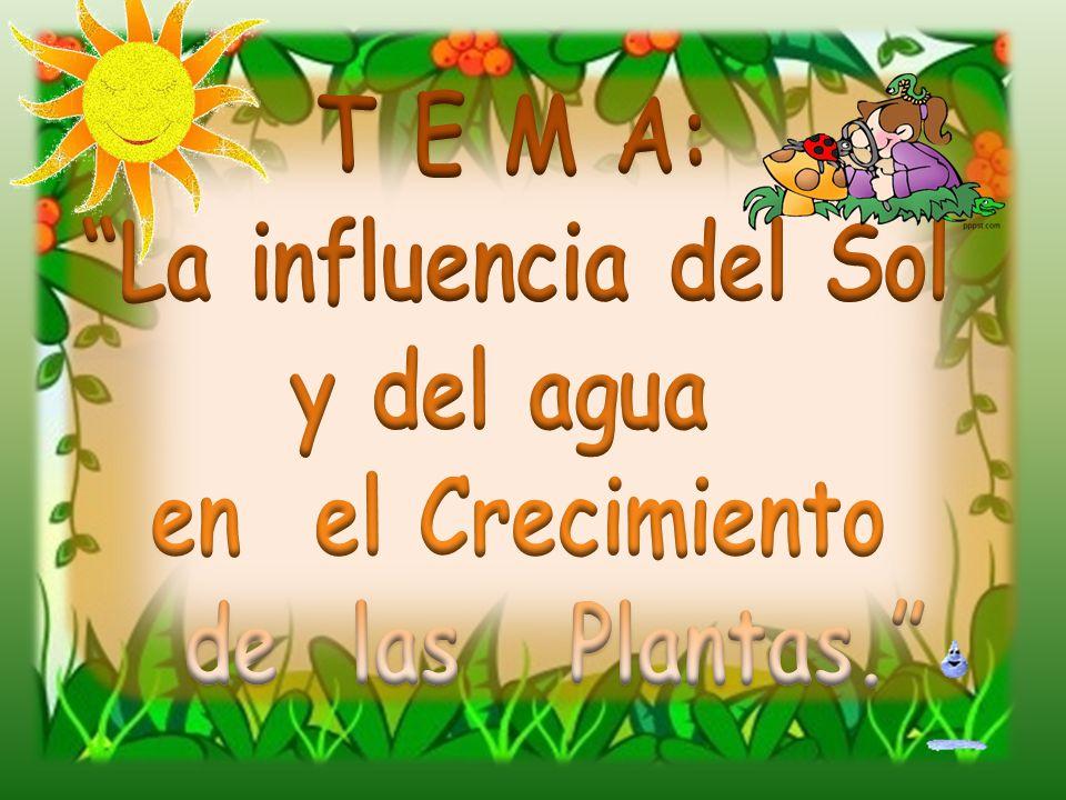 T E M A: La influencia del Sol y del agua en el Crecimiento de las Plantas.