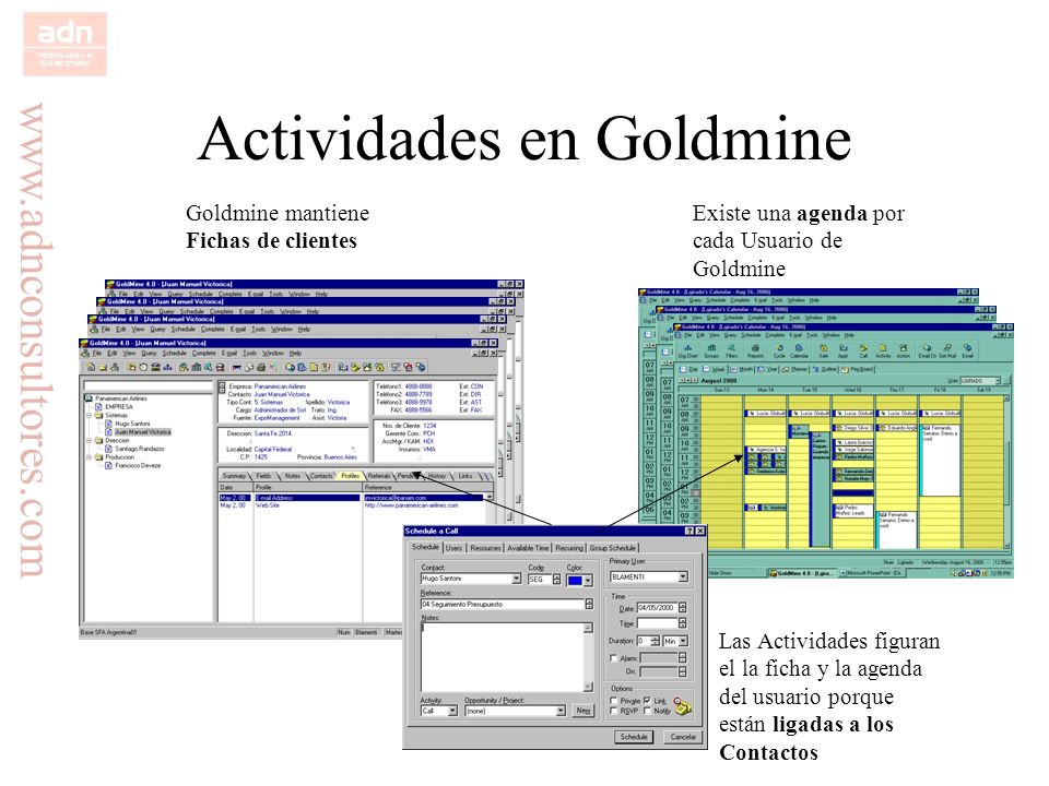 Actividades en Goldmine