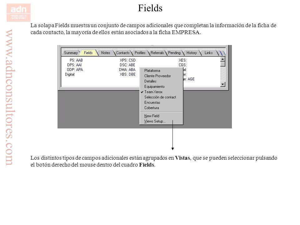 FieldsLa solapa Fields muestra un conjunto de campos adicionales que completan la información de la ficha de.