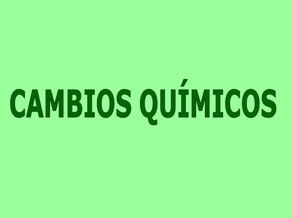 CAMBIOS QUÍMICOS