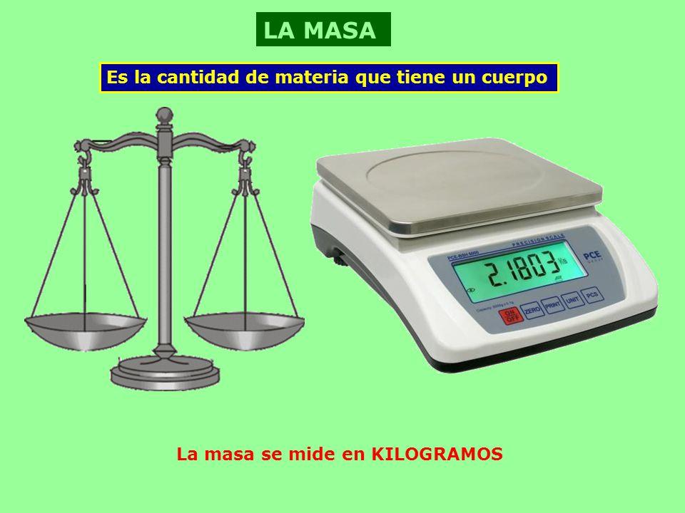 La masa se mide en KILOGRAMOS