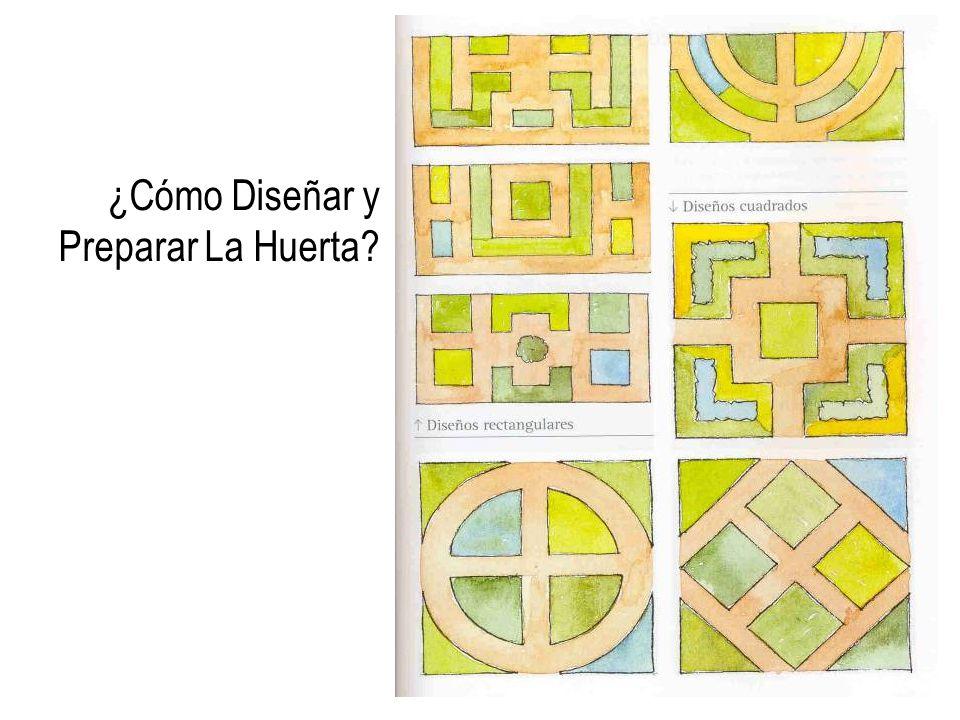 ¿Cómo Diseñar y Preparar La Huerta