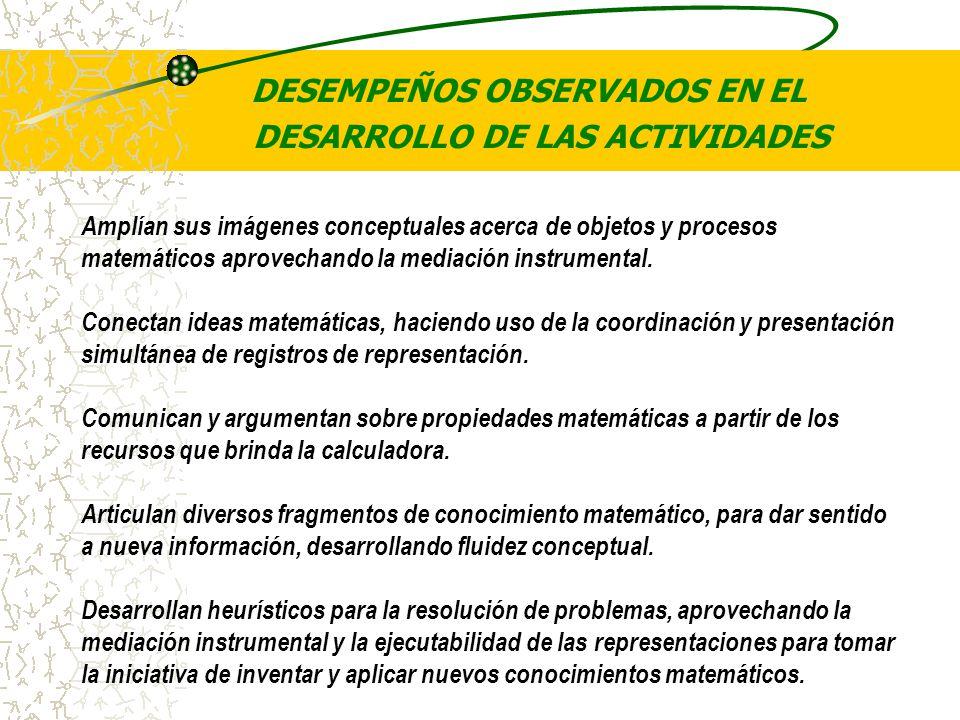 DESEMPEÑOS OBSERVADOS EN EL DESARROLLO DE LAS ACTIVIDADES
