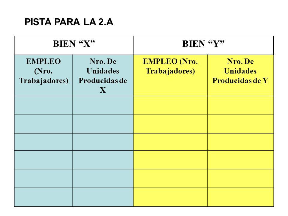 PISTA PARA LA 2.A BIEN X BIEN Y EMPLEO (Nro. Trabajadores)