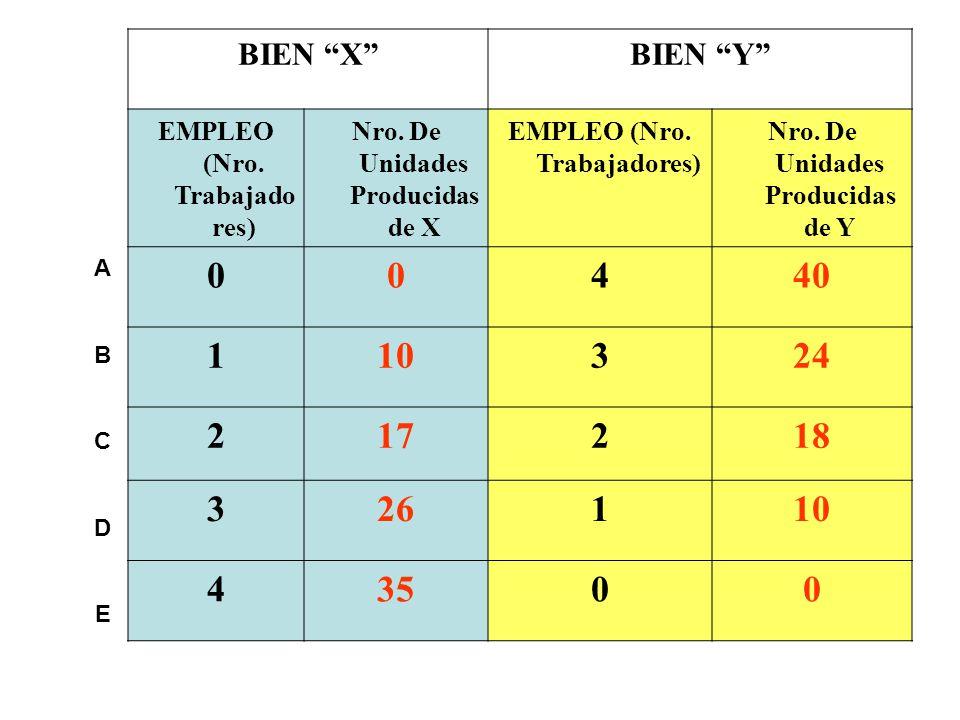 BIEN X BIEN Y EMPLEO (Nro. Trabajadores) Nro. De Unidades Producidas de X. Nro. De Unidades Producidas de Y.