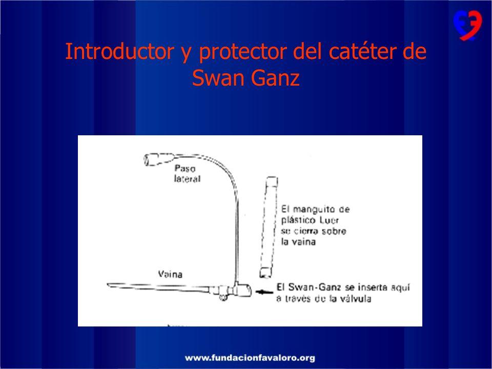 Introductor y protector del catéter de Swan Ganz