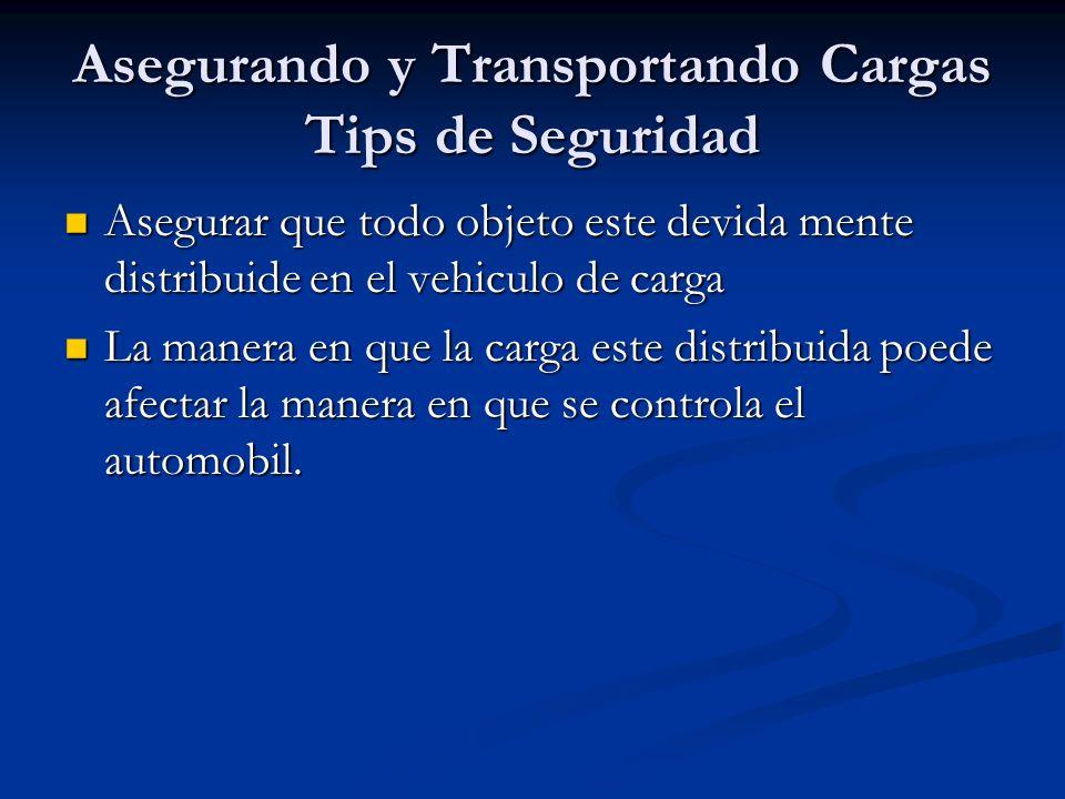 Asegurando y Transportando Cargas Tips de Seguridad
