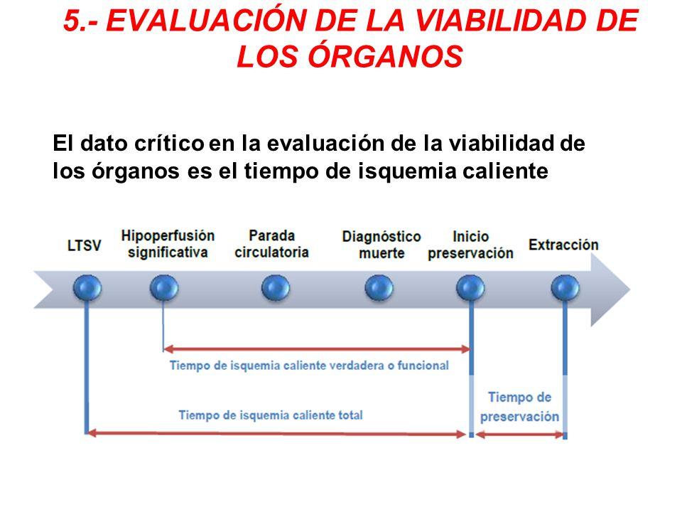 5.- EVALUACIÓN DE LA VIABILIDAD DE LOS ÓRGANOS