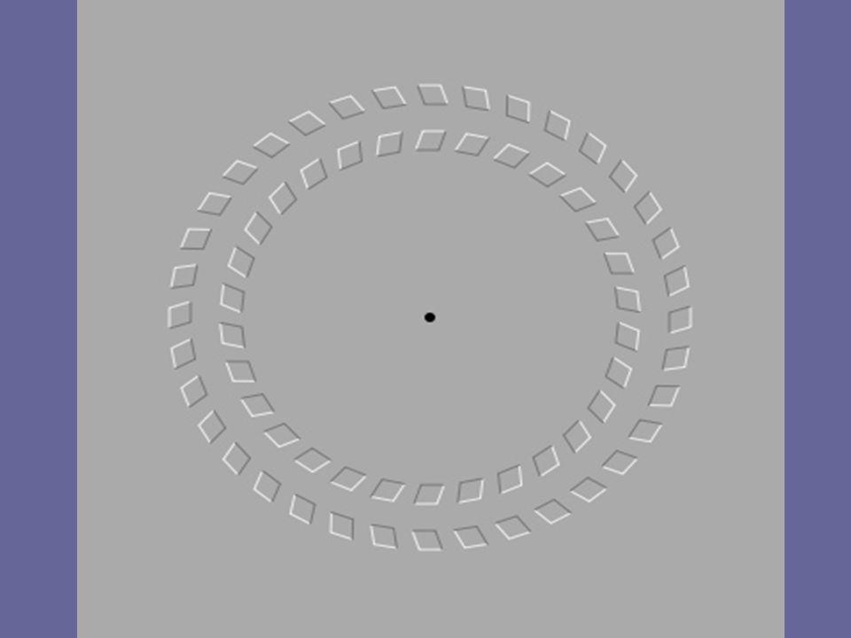 Wenn Sie sich auf den schwarzen Punkt in der Mitte des Bildes konzentrieren und den Kopf langsam Richtung Bildschirm und wieder zurück bewegen, werden Sie das Gefühl haben, dass sich die beiden abgebildeten Kreise drehen.