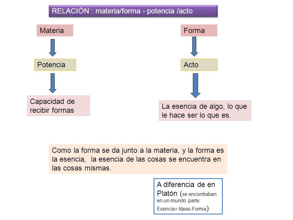 RELACIÓN : materia/forma - potencia /acto