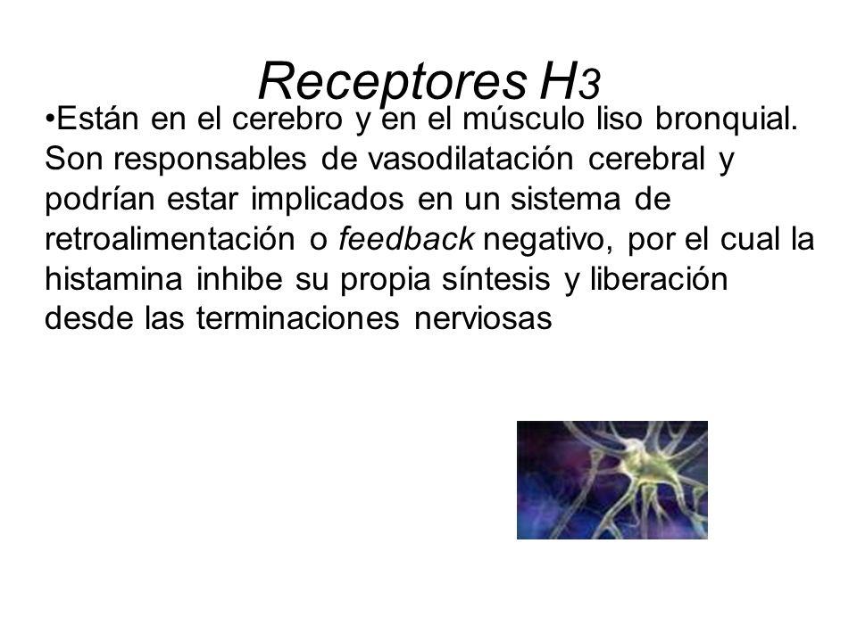 Receptores H3