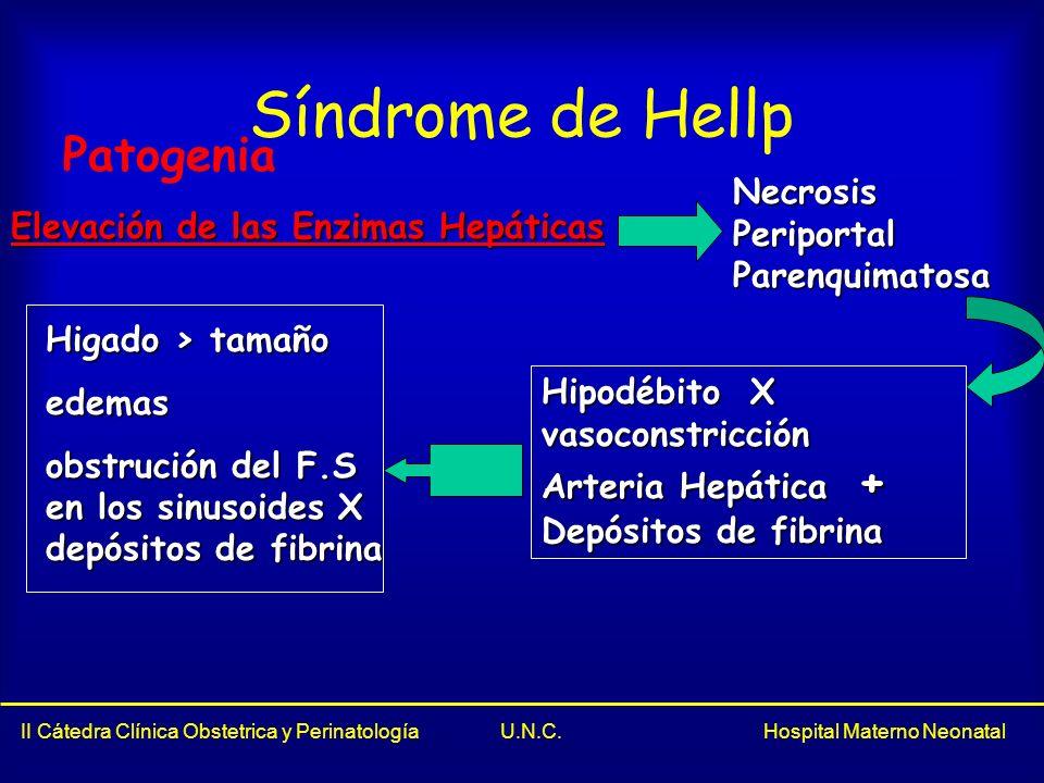 Síndrome de Hellp Patogenia Necrosis Periportal Parenquimatosa