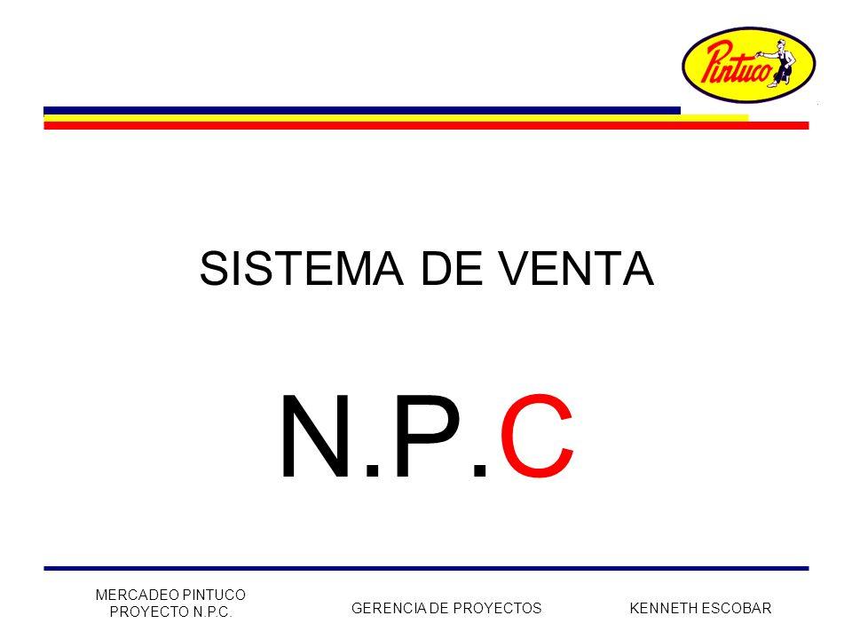 N.P.C SISTEMA DE VENTA MERCADEO PINTUCO PROYECTO N.P.C.