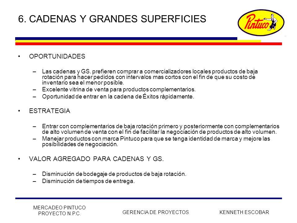 6. CADENAS Y GRANDES SUPERFICIES