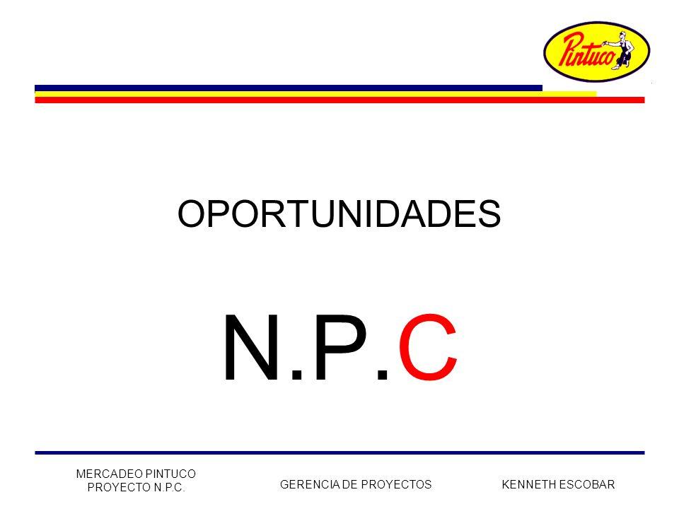 N.P.C OPORTUNIDADES MERCADEO PINTUCO PROYECTO N.P.C.