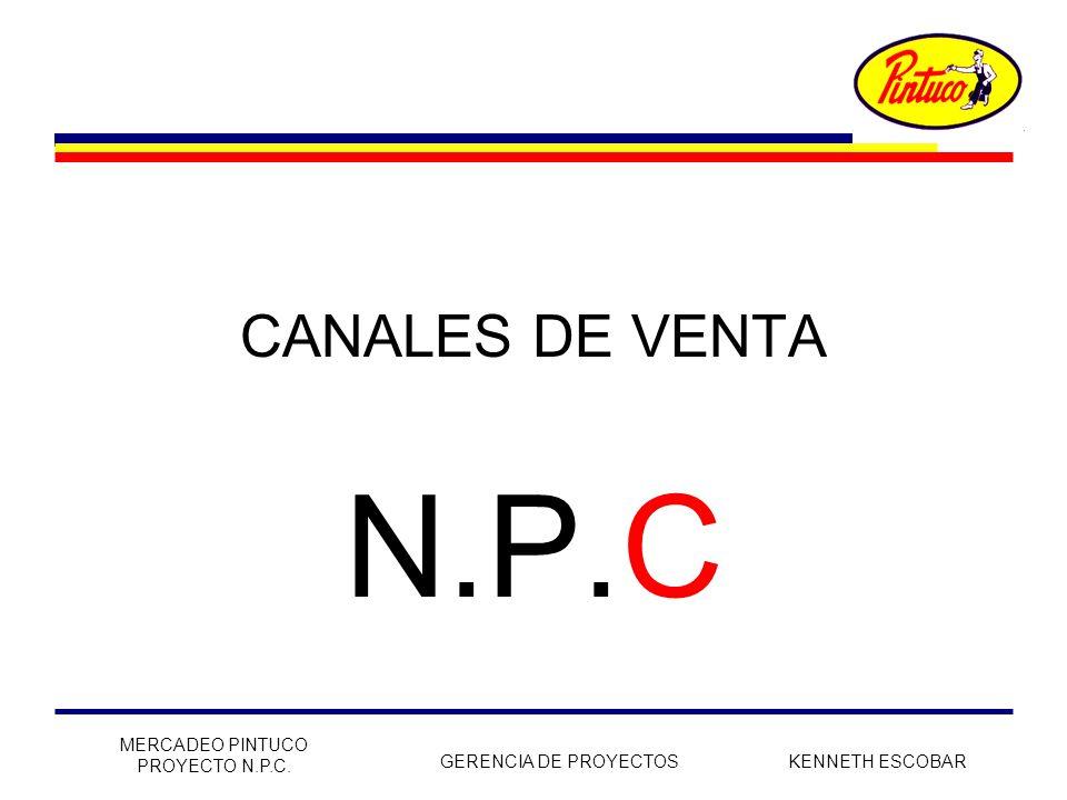 N.P.C CANALES DE VENTA MERCADEO PINTUCO PROYECTO N.P.C.