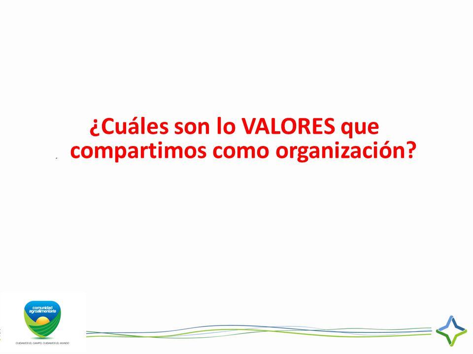 ¿Cuáles son lo VALORES que compartimos como organización