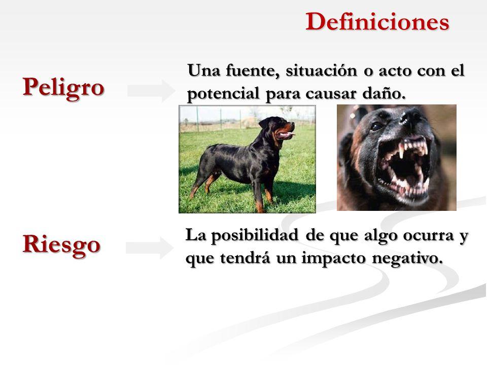 Definiciones Peligro Riesgo