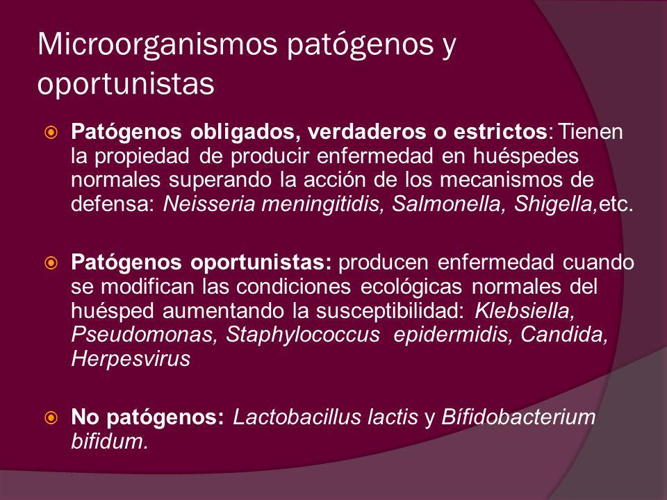 Microorganismos patógenos y oportunistas