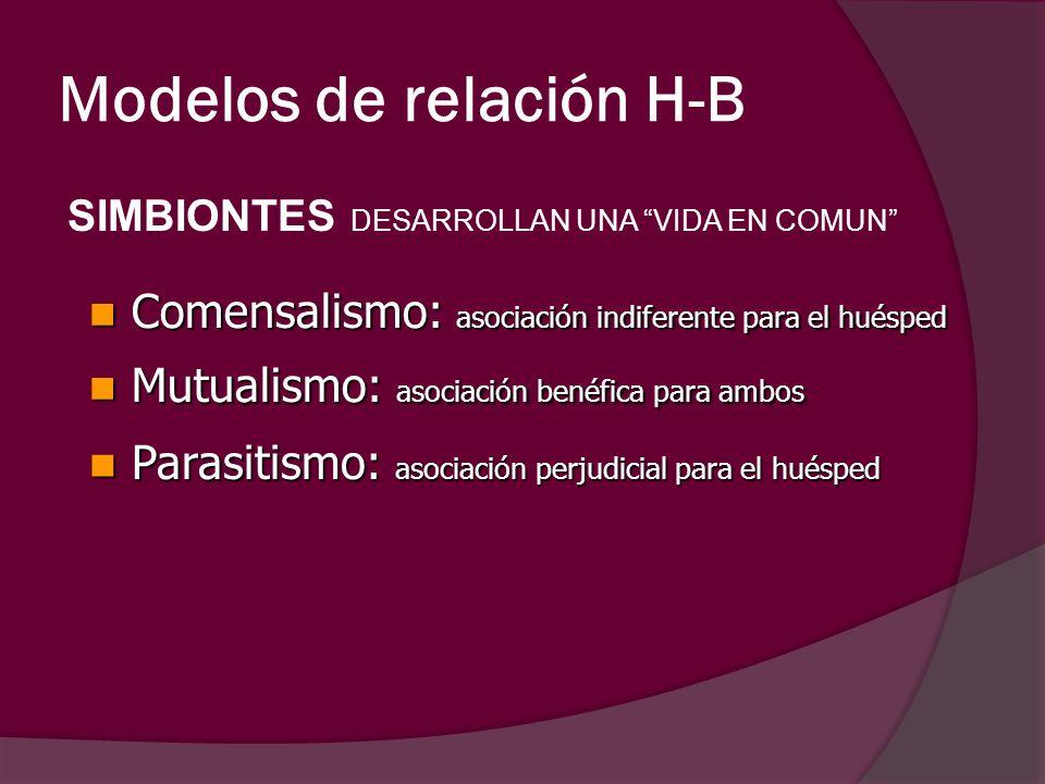 Modelos de relación H-B