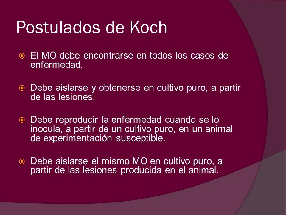 Postulados de Koch El MO debe encontrarse en todos los casos de enfermedad. Debe aislarse y obtenerse en cultivo puro, a partir de las lesiones.