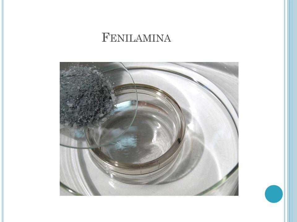 Fenilamina