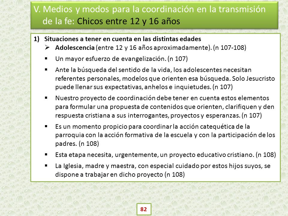 V. Medios y modos para la coordinación en la transmisión de la fe: Chicos entre 12 y 16 años