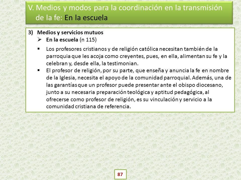 V. Medios y modos para la coordinación en la transmisión de la fe: En la escuela