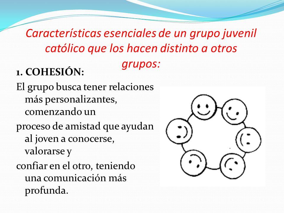 Características esenciales de un grupo juvenil católico que los hacen distinto a otros grupos: