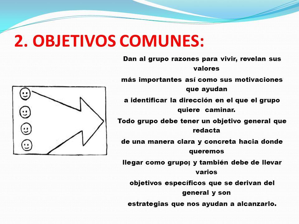 2. OBJETIVOS COMUNES: