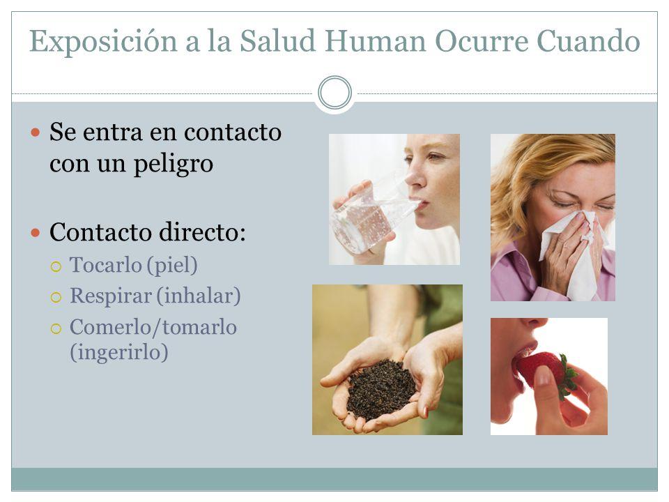 Exposición a la Salud Human Ocurre Cuando
