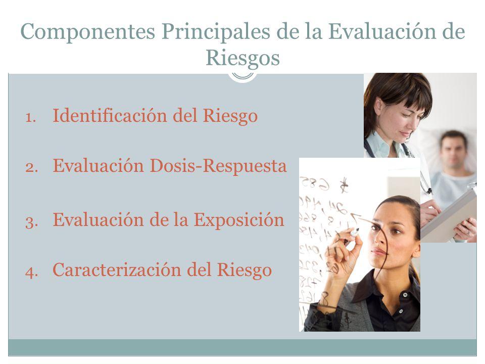 Componentes Principales de la Evaluación de Riesgos