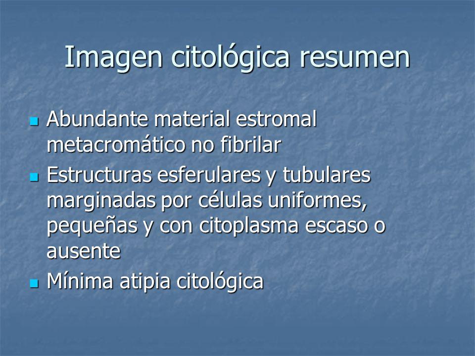 Imagen citológica resumen