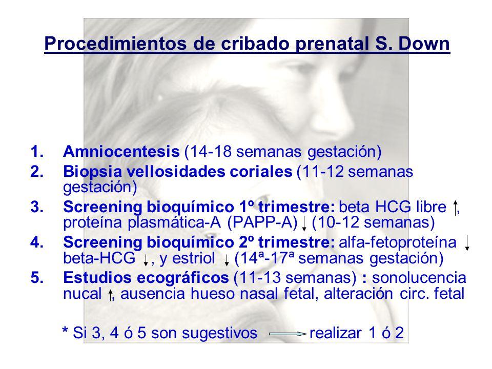Procedimientos de cribado prenatal S. Down