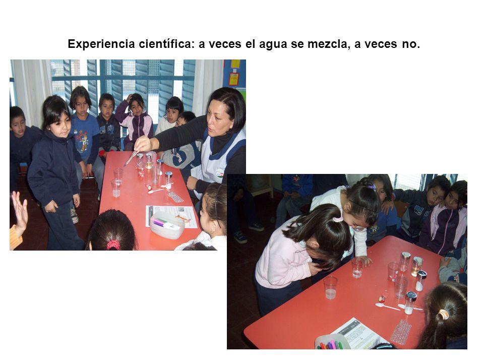 Experiencia científica: a veces el agua se mezcla, a veces no.