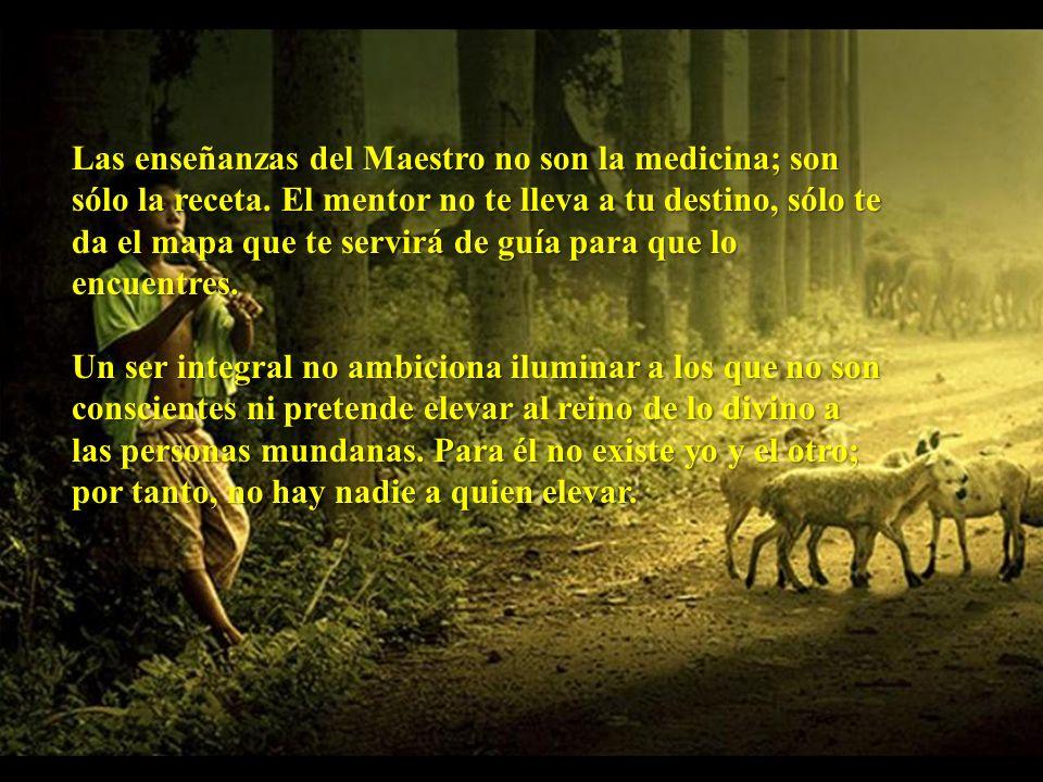 Las enseñanzas del Maestro no son la medicina; son sólo la receta