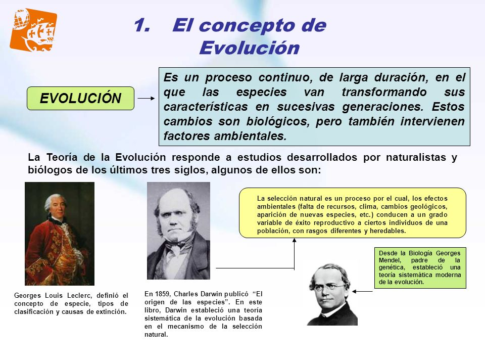 El concepto de Evolución