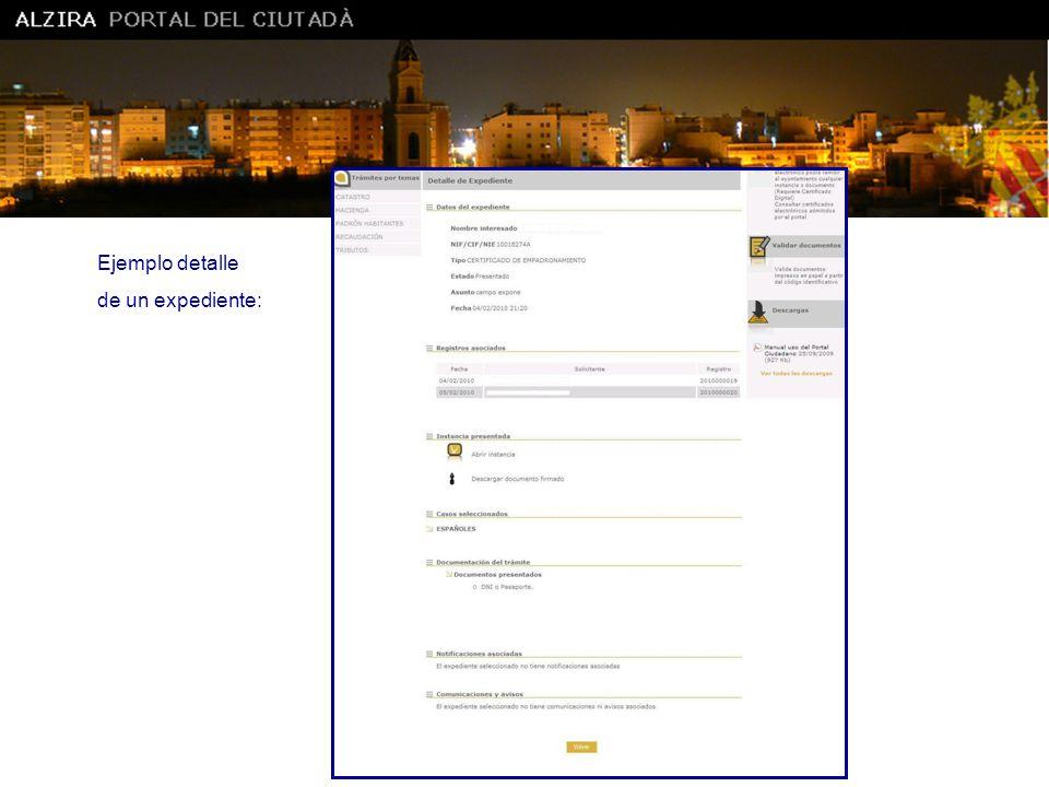 Ajuntament d' Alzira Ejemplo detalle de un expediente:
