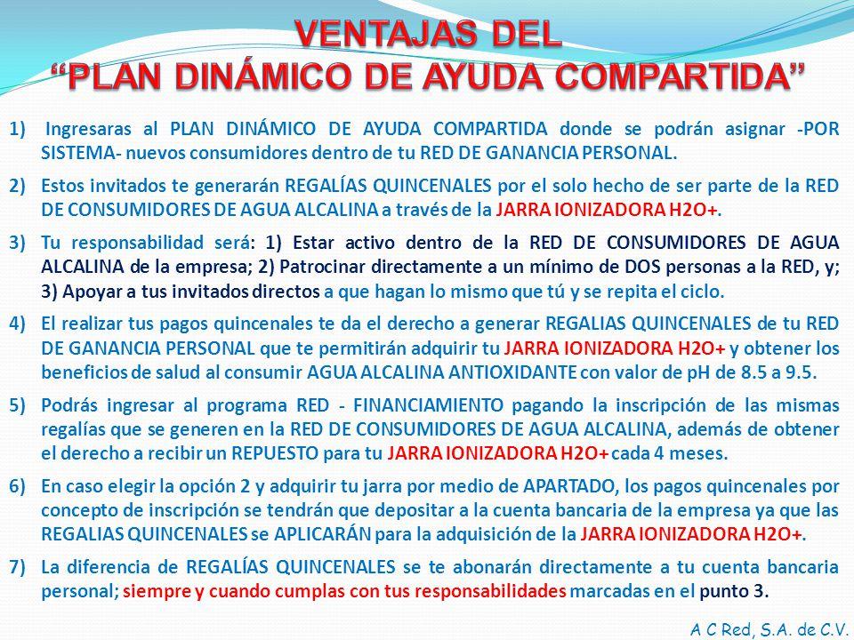 PLAN DINÁMICO DE AYUDA COMPARTIDA