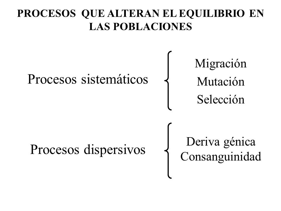 Procesos sistemáticos