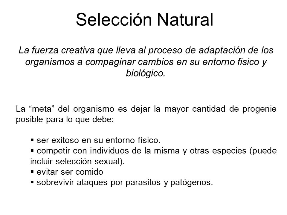 Selección Natural La fuerza creativa que lleva al proceso de adaptación de los organismos a compaginar cambios en su entorno fisico y biológico.