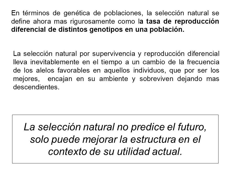 En términos de genética de poblaciones, la selección natural se define ahora mas rigurosamente como la tasa de reproducción diferencial de distintos genotipos en una población.