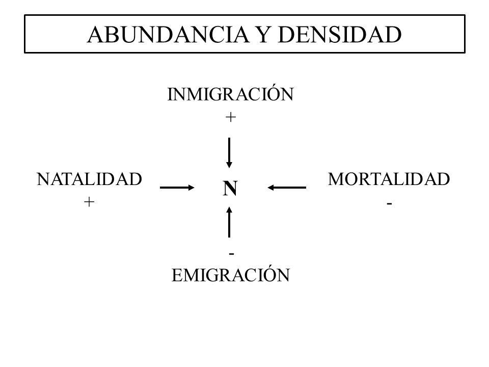 ABUNDANCIA Y DENSIDAD N INMIGRACIÓN + NATALIDAD + MORTALIDAD - -