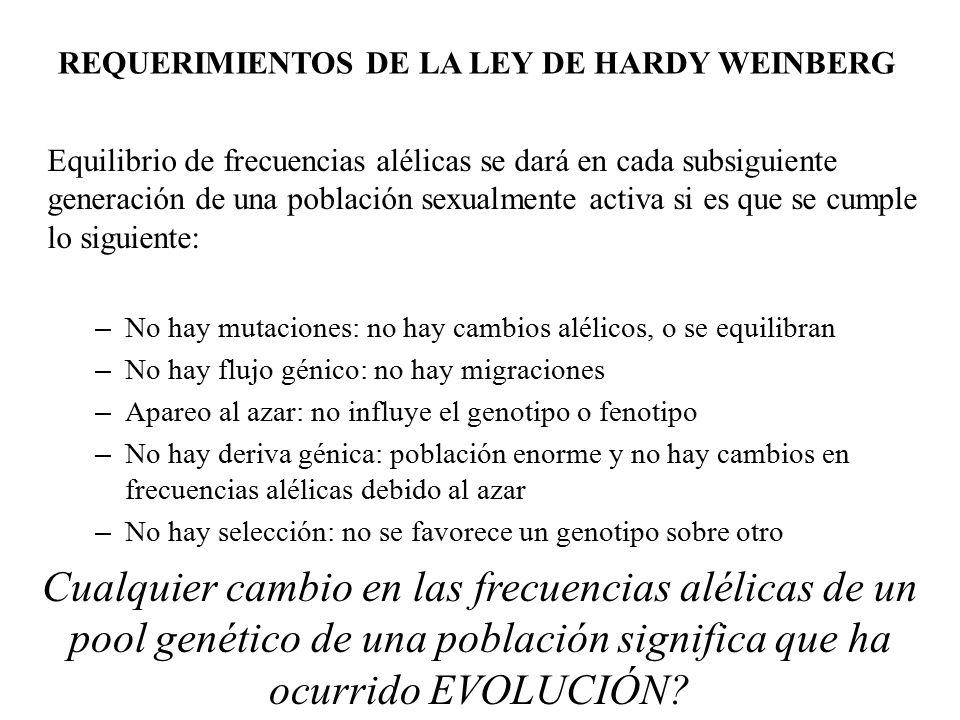 REQUERIMIENTOS DE LA LEY DE HARDY WEINBERG