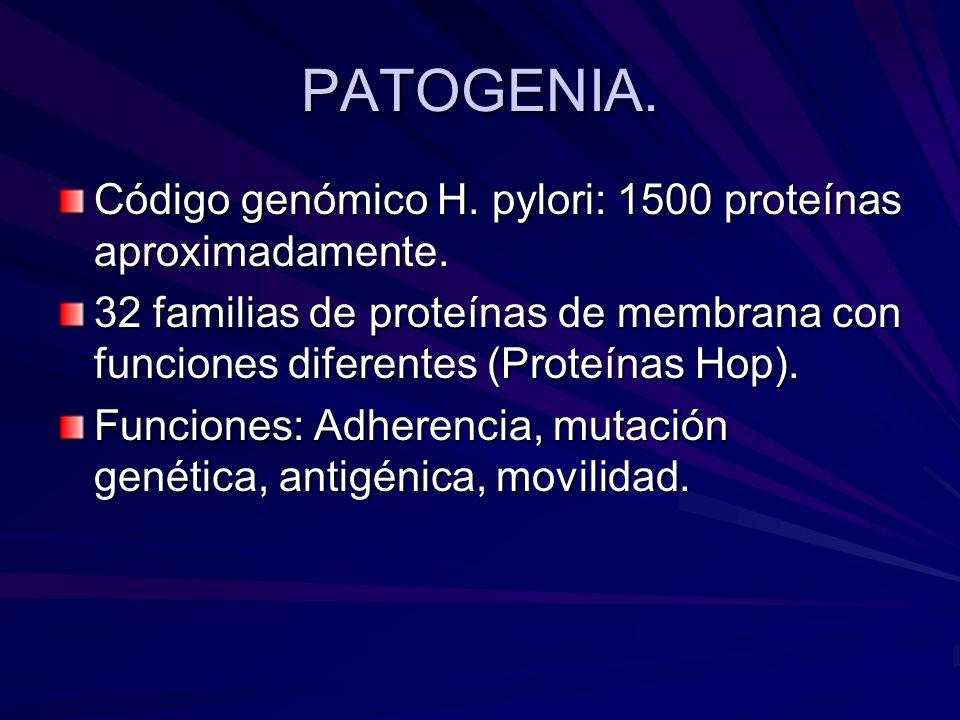 PATOGENIA. Código genómico H. pylori: 1500 proteínas aproximadamente.