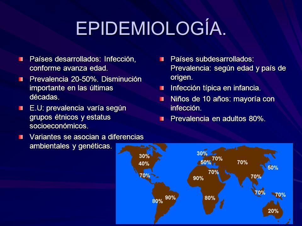 EPIDEMIOLOGÍA. Países desarrollados: Infección, conforme avanza edad.