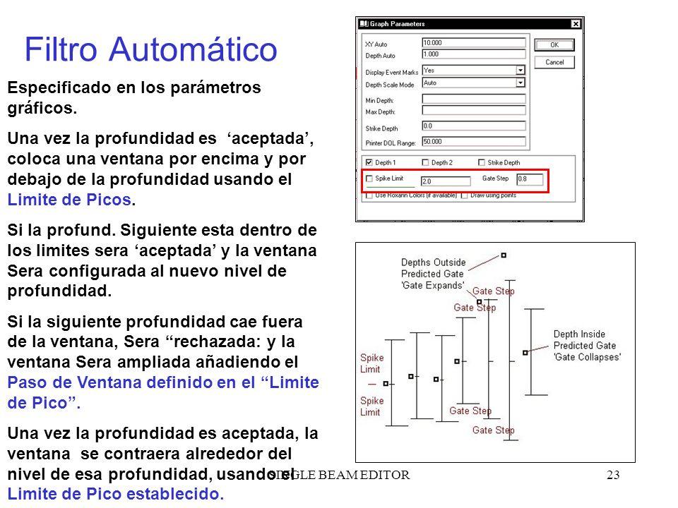 Filtro Automático Especificado en los parámetros gráficos.